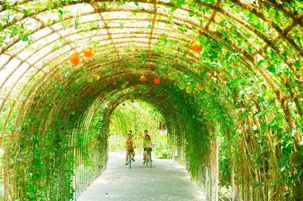 Ảnh: Forever Green Resort