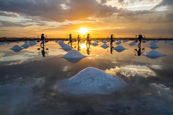 Vẻ đẹp của cánh đồng muối qua con mắt của nhiều nhiếp ảnh gia nổi tiếng (Ảnh: ST)