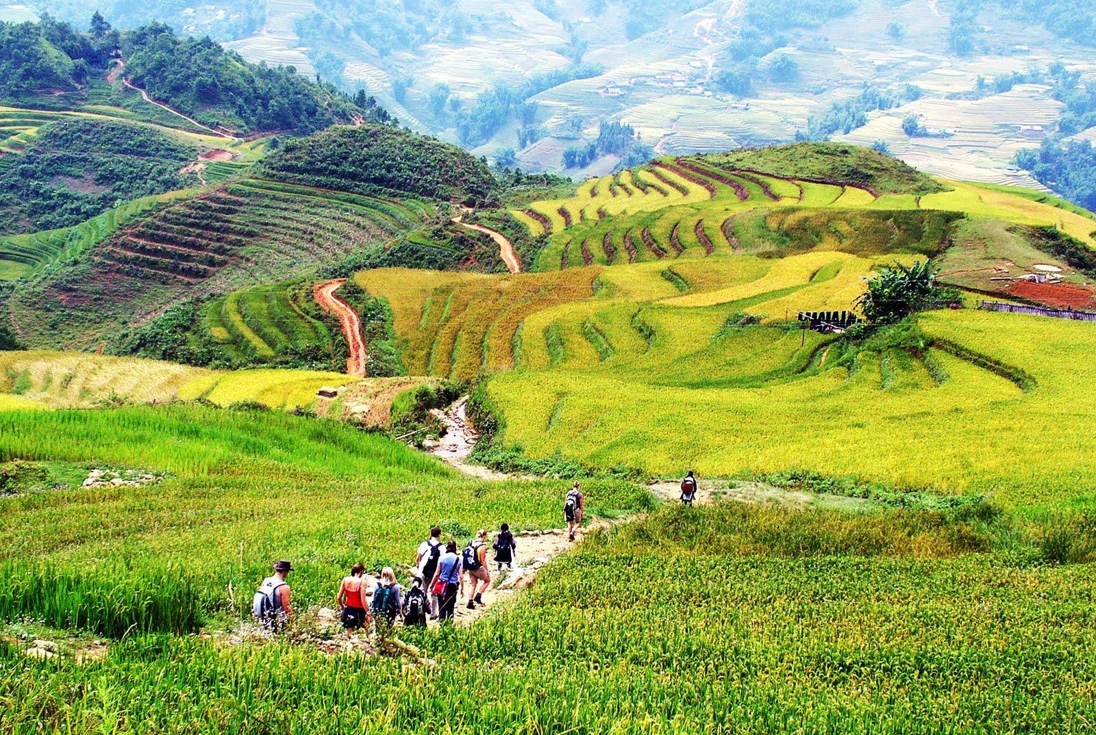 Thung lũng Mường Hoa vé máy bay đi Sapa giá rẻ