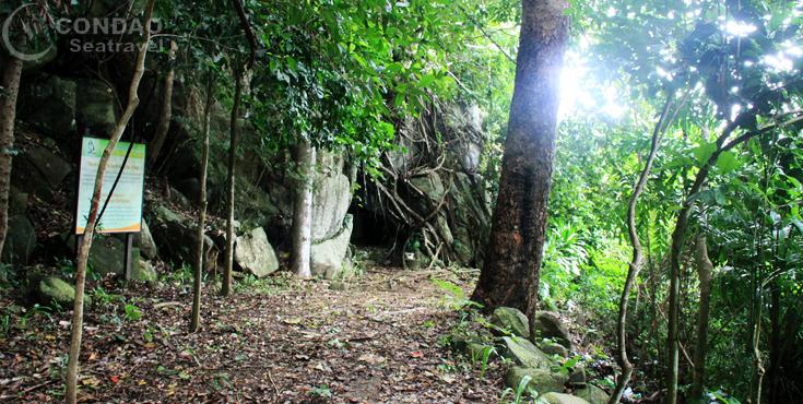 Vườn quốc gia Côn Đảo và hành trình xuyên rừng - Corenacca
