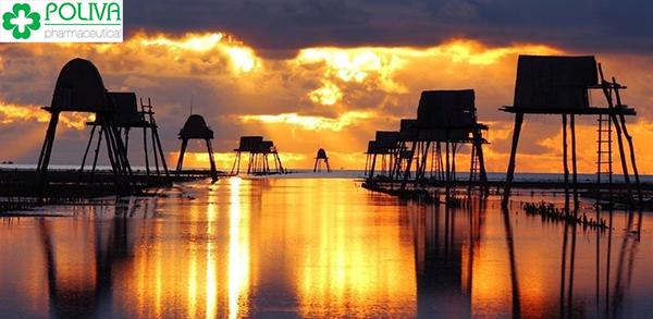 địa điểm du lịchĐịa điểm du lịch cực hot 63 tỉnh thành Việt Nam