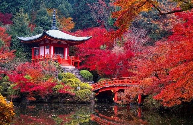 Nhật Bản luôn là quốc gia du lịch hấp dẫn du khách trên thế giới